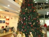 Farra_xmas_tree_competition27