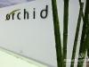 fedde_legrand_orchid_031