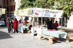 Social & Cultural Events 2010