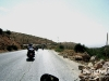 Harley_Davidson_Owners_Group_Lebanon_2010_037