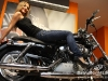 Harley-Davidson230910-276