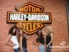 Harley-Davidson230910-286
