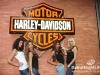 Harley-Davidson230910-287