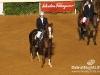 beirut_horse_race_119