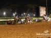 beirut_horse_race_157
