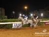 beirut_horse_race_158