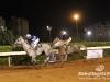beirut_horse_race_159