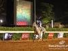 beirut_horse_race_162