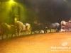 Florilegio_Italian_Circus178