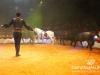Florilegio_Italian_Circus183