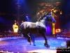 Florilegio_Italian_Circus261