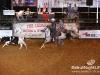 cedar_rodeo_elrancho_lebanon_35