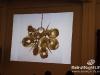 Carwan - Mian Does Beirut - Exhibition In_Lebanon_Karim_Bekdache_showroom_27051142