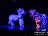 Cirque_Du_Liban_Sagesse_Jdeideh_28_04_1146