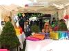 Mzaar_Summer_Festival_Expo_Show14