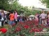 Mzaar_Summer_Festival_Expo_Show302