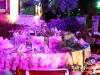 Wild_Animals_Gala_Dinner_Moawad_Palace_Beirut029