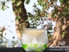 Diageo_World_Class_Bartender_Competition_Iris211
