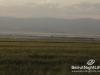 baalbek-touristic-45