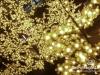 Achrafieh-Christmas-Decoration-2014-04
