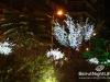 christmas-decoration-26
