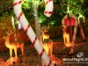 christmas-decoration-35