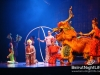cirque-du-soleil-042