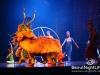 cirque-du-soleil-043