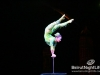 cirque-du-soleil-054