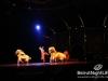 cirque-du-soleil-179