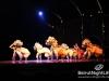 cirque-du-soleil-192