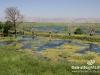Bekaa_Nature_Lebanon24