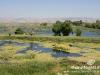Bekaa_Nature_Lebanon26
