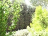 Bekaa_Nature_Lebanon29