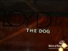 floyd-the-dog-34