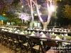 green_carpet_dinner_021