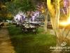 green_carpet_dinner_023