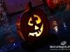 halloween-amethyste-phoenicia-005