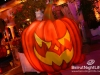 halloween-amethyste-phoenicia-009