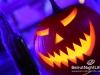 halloween-amethyste-phoenicia-032