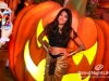 halloween-amethyste-phoenicia-057