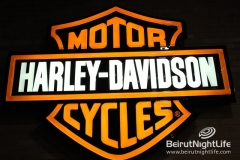 Harley Davidson Ride 20121011