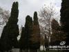 istanbul_hagia_sophia_56