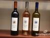 ixsir-wine-tasting-31