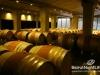 ixsir-winery-tour-17