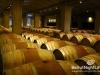 ixsir-winery-tour-26