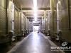 ixsir-winery-tour-31