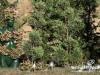 les-jardins-ephemeres-rikkyz-002