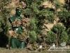 les-jardins-ephemeres-rikkyz-004
