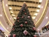 Lighting-of-the-christmas-tree-at-city-centre_21